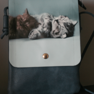 Handtassen en geldbeugels