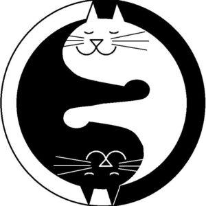 Kat-lijn